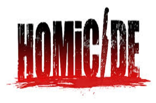 What-is-the-punishment-for-an-attempt-to-commit-Culpable-Homicide-in-IPC