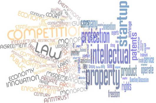 Competition-Law-vs-Intellectual-Property-Right